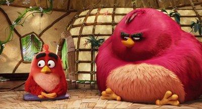 """""""Angry Birds"""" vuela hasta el número uno de la taquilla en EE.UU."""