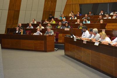 En audiencia pública debaten ley que permite uso de fondos del IPS para infraestructura