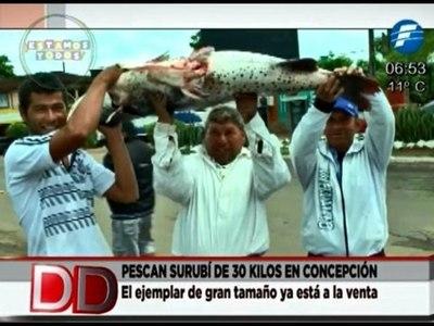 Pescó en surubí de 30 kilos en el río Ypané