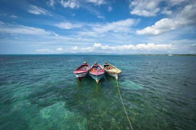 La guía imprescindible de Jamaica