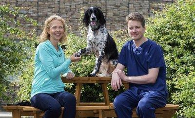 Regeneran la pata de una perra en proyecto para víctimas de minas antipersona
