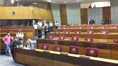Senado no sesiona ante masivo pedido de permisos