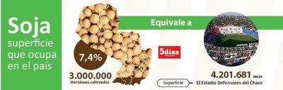 Cultivo de soja en el país es igual a 120 mil veces el Parque Ñu Guasu