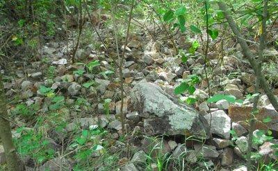 Analizarán rocas, tras el hallazgo de diamantes