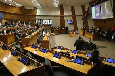 Senado dio entrada al PGN con los cambios introducidos por Diputados