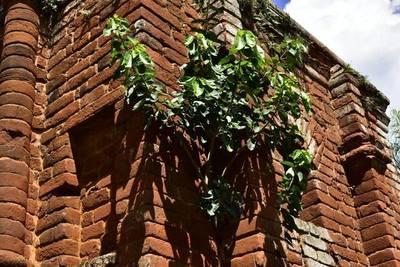 Torre Jesuitica de Santa Rosa aún no será reparada