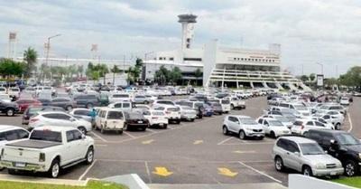 Aeropuerto ya no cuenta con servicio de aves rapaces para proteger vuelos