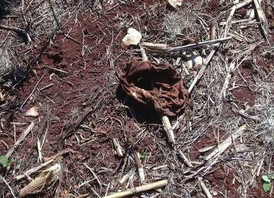 Macabro hallazgo de 2 cuerpos conmociona a Canindeyú y al país