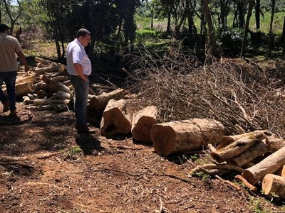 EBY denuncia desmonte en franja de protección de recursos hídricos ubicada en su propiedad