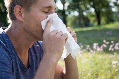 Todo sobre la alergia al polen