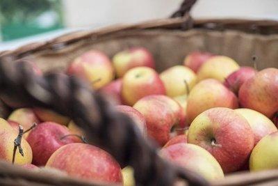 Cómo conservar frutas y verduras