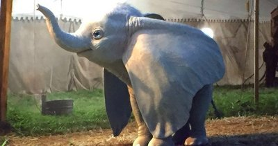 """El """"Dumbo"""" de Tim Burton amplia la historia original con conflictos humanos"""