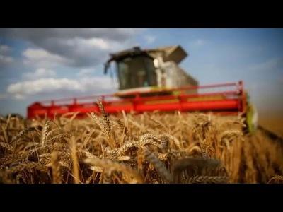 Banco Regional apuesta por el sector agrícola