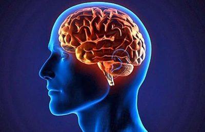 Aprendiendo cómo consentir a tu cerebro