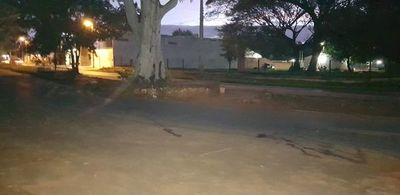 Solicitan medidas de prevención de accidentes sobre avenida Dr. Victorio Curiel