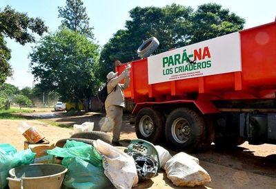 Dengue: Rastrillan más de 8.000 predios en Alto Paraná