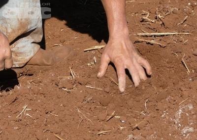 Cuidar los suelos