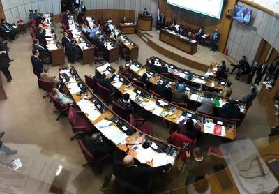 Senado sesiona con 14 puntos en el orden del día, priorizando ley de adopción