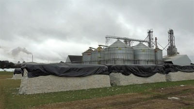 Inestabilidad climática mermó la cosecha del pujante algodón chaqueño