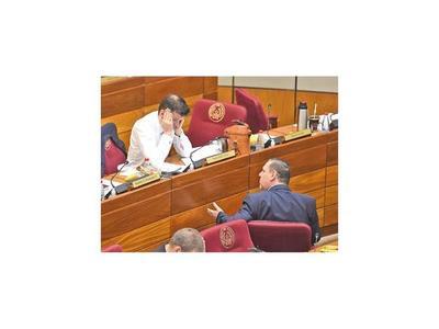 El Senado se convirtió en un ring de ataque y defensa al presidente