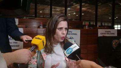 Diputados ombotove proyecto de léi oderoga haguã caja parlamentaria
