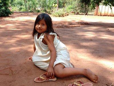 Procuradora de Brasil pide condena a Itaipú por daños a los indígenas