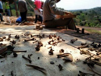 Hallazgo de más restos óseos alerta a ocupantes en propiedad de Stroessner