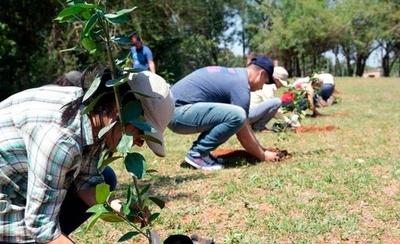 HOY / Preparan plantación masiva de árboles en el día de la Primavera con cientos de voluntarios