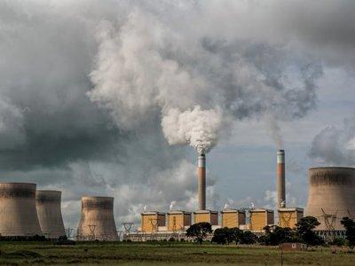 El mecanismo del planeta contra el exceso de carbono: Extinciones masivas