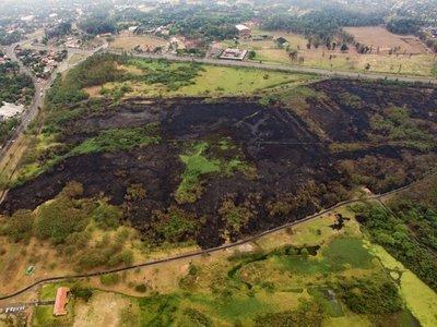 Plantean cómo restaurar Parque Guasu  tras gran impacto  del fuego