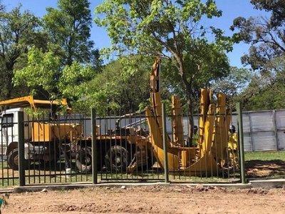 Así será el traslado de árboles en el Botánico