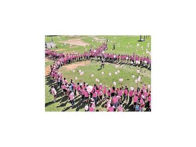 Renuevan ayuda en la lucha contra el cáncer de mama