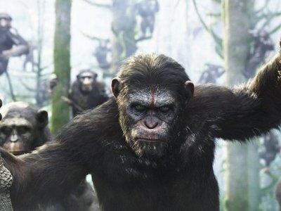 Disney trabaja en una nueva cinta de la sagaEl planeta de los simios