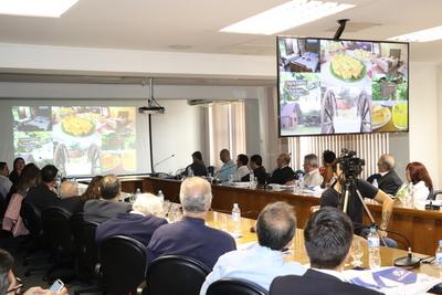 Paraguay se promociona como destino turístico en Sao Paulo