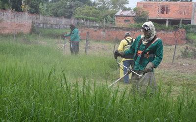 El 94% de los casos de dengue se registran en Asunción y Central