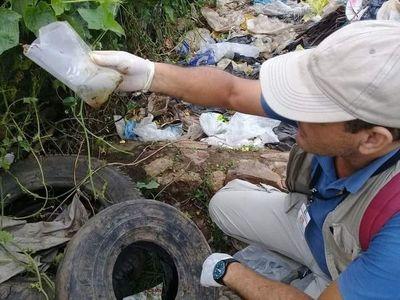 Dengue: 31 barrios de Asunción presentan casos confirmados