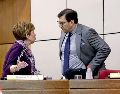 """Ovelar lamenta que proyecto de ley sea estudiado hoy casi en """"ayunas"""""""