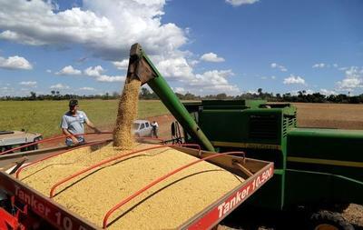 Abogado denuncia que colega brasileña creó 'esquema criminal' para apropiarse de productos agrícolas