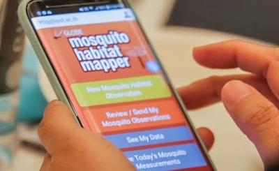 HOY / Mosquito Habitat Mapper: la app que permite identificar larvas y zonas de criaderos desde el celular
