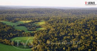 INFONA realiza controles para cuidar los espacios verdes en Itapúa