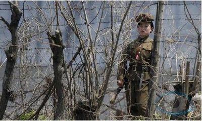 Corea del Norte tortura y arroja a cristianos a perros hambrientos