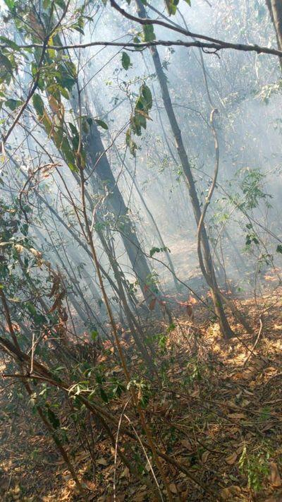 Incendio afecta compañías de Atyrá y Altos