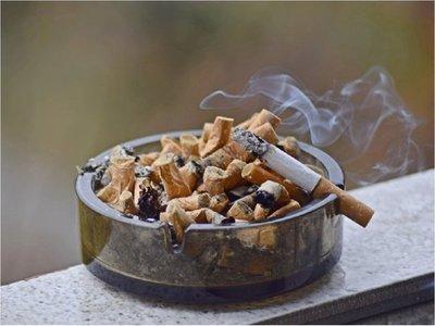 Sindicatos se pronuncian a favor de impuestos a la soja y al tabaco