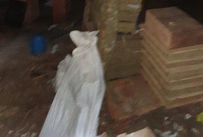 Triple homicidio en Pedro Juan Caballero