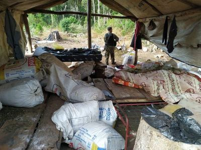 Incautan 7.000 kilos de droga en operativo fiscal y policial