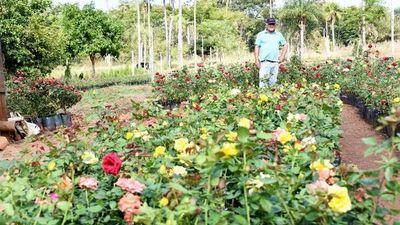 Prohíben plantas importadas
