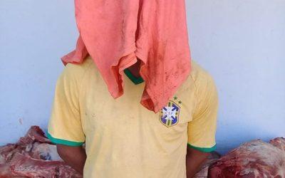 Apresan a joven que robó dos chanchos, celulares y un termo – Diario TNPRESS
