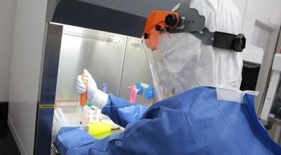 Plasma y placenta, alternativas que se estudian contra el Covid-19