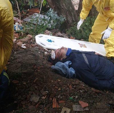 Trabajador podaba un árbol y  sufre heridas al caer al suelo – Diario TNPRESS