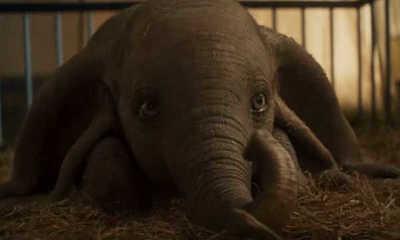 La película Dumbo fue grabada sin elefantes en el set – Prensa 5